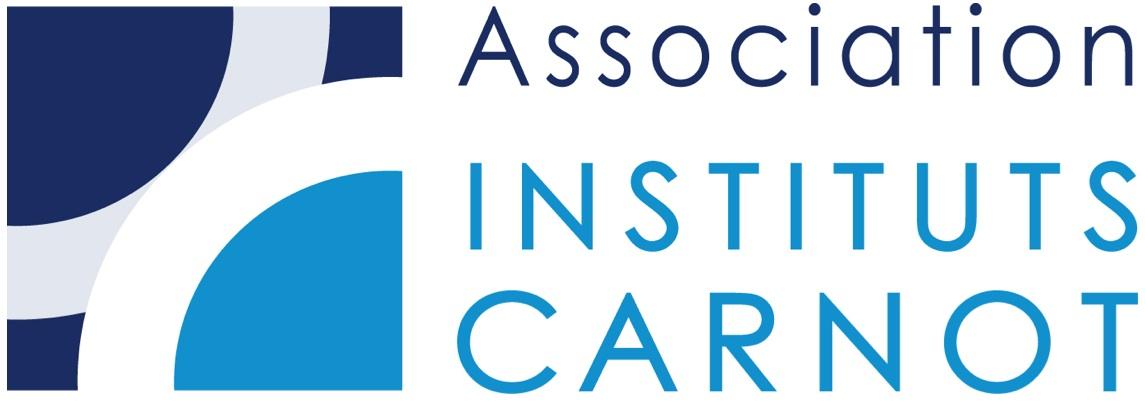 Logo instituts carnot